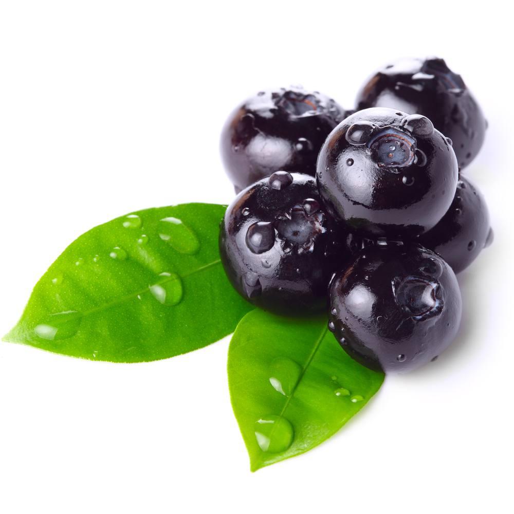 bilberry-06