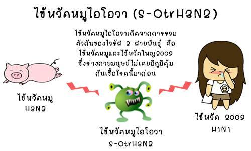 ไข้หวัดหมูไอโอวา (S-OtrH3N2 )