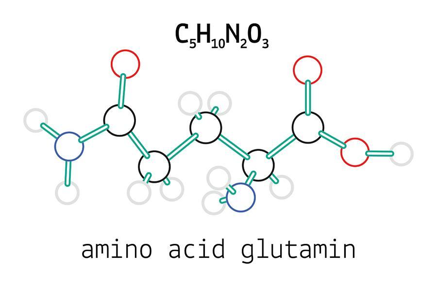 แอลกลูตามีน
